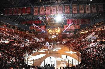 Joelouisarena_display_image