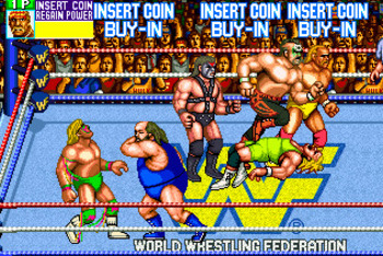 Wwfwrestlefest_display_image