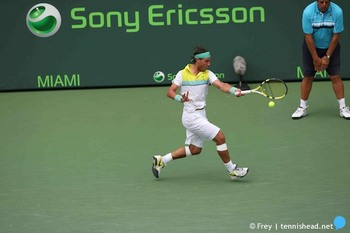 Nadal3_display_image