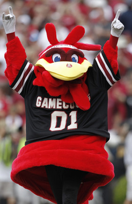 COLUMBIA, SC - SEPTEMBER 11: South Carolina Gamecocks mascot Cocky celebrates during the game against the Georgia Bulldogs at Williams-Brice Stadium on September 11, 2010 in Columbia, South Carolina. The Gamecocks beat the Bulldogs 17-6. (Photo by Mike Za