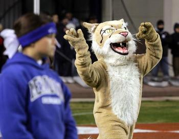The Meridian Wildcats' mascot was stolen on accident.