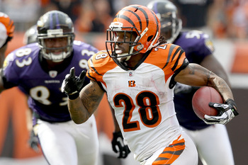 CINCINNATI - SEPTEMBER 19:  Bernard Scott #28 of the Cincinnati Bengals carries the ball against the Baltimore Ravens at Paul Brown Stadium on September 19, 2010 in Cincinnati, Ohio. The Bengals beat the Ravens 15-10.  (Photo by Matthew Stockman/Getty Ima
