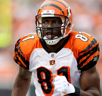 CINCINNATI - SEPTEMBER 19:  Terrell Owens #81 of the Cincinatti Bengals in action against the Baltimore Ravens at Paul Brown Stadium on September 19, 2010 in Cincinnati, Ohio.  (Photo by Matthew Stockman/Getty Images)