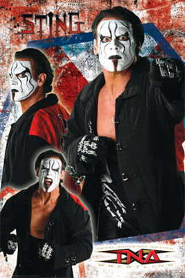 Sting_display_image