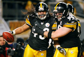 Alg_polamalu_display_image