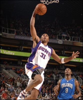 Shawn_marion_display_image