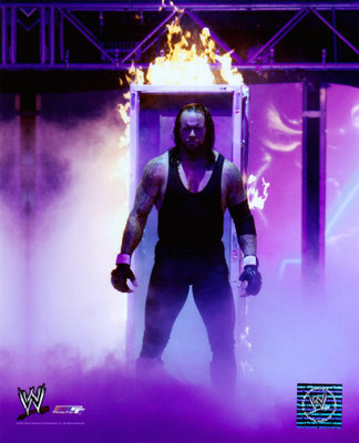 The-undertaker_display_image