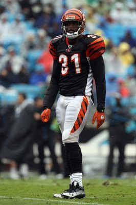 CHARLOTTE, NC - SEPTEMBER 26:  Roy L. Williams #31 of the Cincinnati Bengals against the Carolina Panthers during their game at Bank of America Stadium on September 26, 2010 in Charlotte, North Carolina.  (Photo by Streeter Lecka/Getty Images)