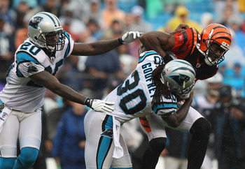 CHARLOTTE, NC - SEPTEMBER 26:  Terrell Owens #81 of the Cincinnati Bengals keeps the ball away from teammates Chris Gamble #20 and Charles Godfrey #30 of the Carolina Panthers during their game at Bank of America Stadium on September 26, 2010 in Charlotte