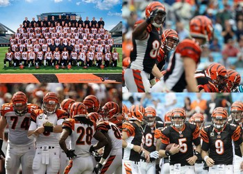 There is no 'I' in team Bengals 2010
