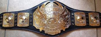 The prize on offer: the TNA World Heavyweight Championship