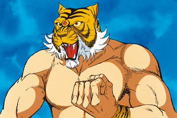 Tiger_mask_2_500_display_image