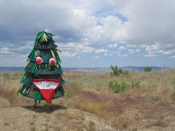 Thestanfordtree_display_image