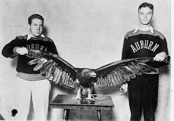 Auburnswareagle_display_image