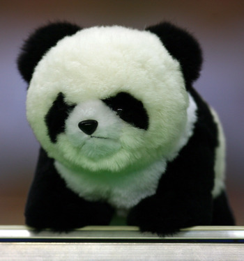 SHANGHAI, CHINA - SEPTEMBER 11:  A toy panda is seen on top of the England dug out during the FIFA Women's World Cup 2007 Group A match between Japan and England at the Shanghai Hongkou Football Stadium on September 11, 2007 in Shanghai, China.  (Photo by