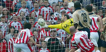 Davidseaman_display_image