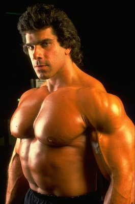 1988:  A protrait of Lou Ferrigno aka The Incredible Hulk. \ Pic: Bill Dobbins \ Mandatory Credit: Allsport UK /Allsport