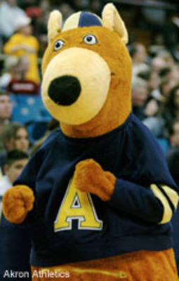 Akron-zippy-101904_display_image