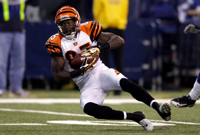 INDIANAPOLIS - DECEMBER 07:  Chad Johnson #85 of the Cincinnati Bengals makes a catch against the Indianapolis Colts at Lucas Oil Stadium on December 7, 2008 in Indianapolis, Indiana.  (Photo by Andy Lyons/Getty Images)