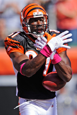 CINCINNATI, OH - OCTOBER 10:  Terrell Owens #81 of the Cincinnati Bengals celebrates his 43-yard touchdown catch in the first quarter against the Tampa Bay Buccaneers at Paul Brown Stadium on October 10, 2010 in Cincinnati, Ohio. Tampa Bay defeated Cincin