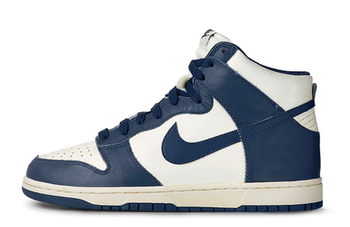 Nikedunks_display_image