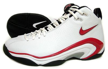 Nikeairpippenii_display_image