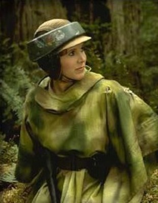 Leia_display_image