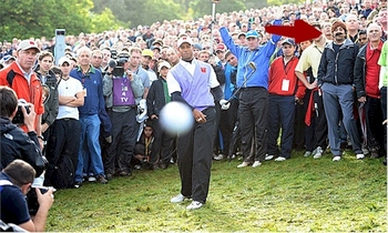 Tiger-woods-fan_display_image