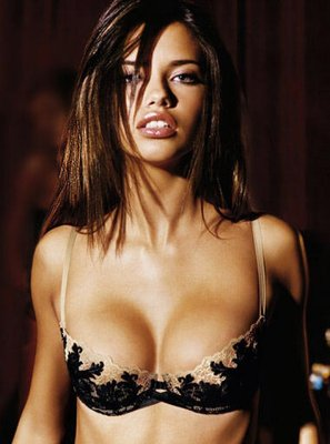 Adriana-lima-hot-and-sexy-picture_display_image