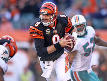 CINCINNATI - OCTOBER 31:  Carson Palmer #9 of  the Cincinnati Bengals runs with the ball during the NFL game against the Miami Dolphins at Paul Brown Stadium on October 31, 2010 in Cincinnati, Ohio.  (Photo by Andy Lyons/Getty Images)