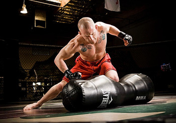 Gray-maynard_everlast_display_image