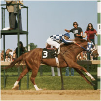 Secretariat1_display_image
