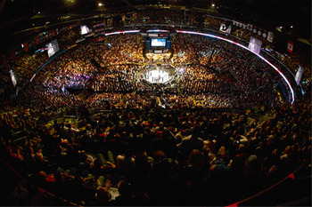 Ufc_arena_display_image