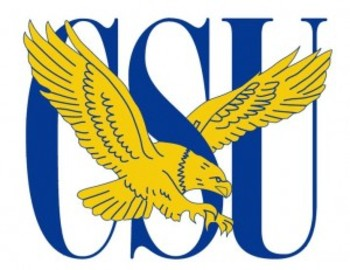 Coppin-state-logo1-300x231_display_image