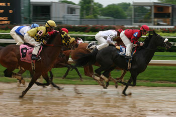 800px-horse_race_churchill_downs_2008-04-18_display_image