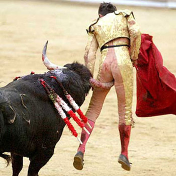 Bullfight_display_image