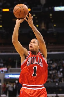 Derrick_rose08_display_image