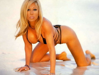 Terrirunnels_display_image