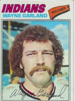 Waynegarland_display_image