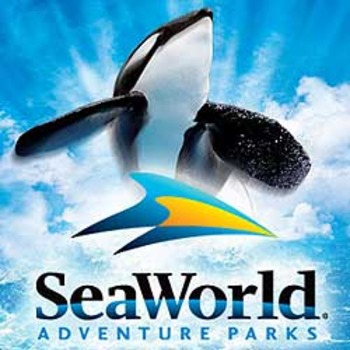 Seaworld_display_image