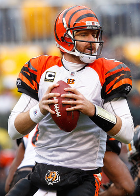 PITTSBURGH - DECEMBER 12:  Carson Palmer #9 of the Cincinnati Bengals drops back to pass against the Pittsburgh Steelers during the game on December 12, 2010 at Heinz Field in Pittsburgh, Pennsylvania.  (Photo by Jared Wickerham/Getty Images)