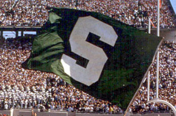 Msu-flag_display_image