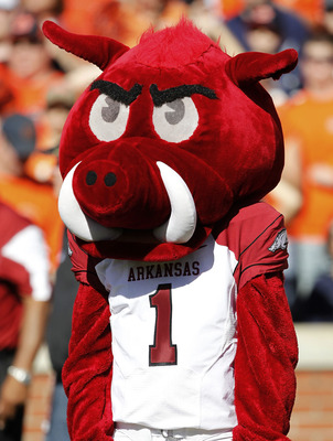 AUBURN - OCTOBER 16:  Arkansas Razorbacks mascot Big Red watches the action on the field during the game against the Auburn Tigers at Jordan-Hare Stadium on October 16, 2010 in Auburn, Alabama.  (Photo by Mike Zarrilli/Getty Images)