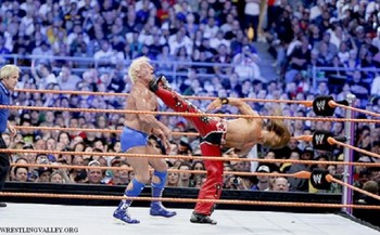Shawn-michaels-vs-ric-flair-500x310_display_image