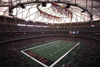 Atlanta_falcons_display_image