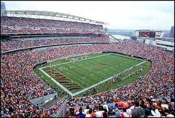 Cincinnati_bengals_display_image