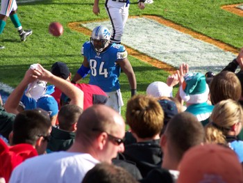 Detroit Lions tight end Brandon Pettigrew celebrates after a hard-earned touchdown.