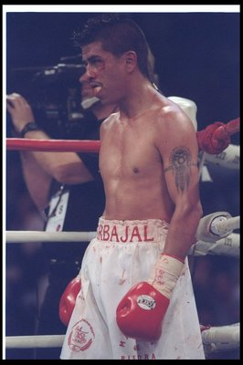 18 Jan 1997:  Michael Carbajal looks on during a bout against Mauricio Pastrana at the Thomas &amp; Mack Center in Las Vegas, Nevada.  Pastrana won the fight with a decision in the twelfth round. Mandatory Credit: Jed Jacobsohn  /Allsport