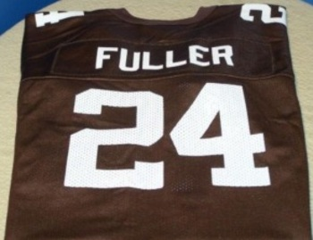 Fuller_display_image