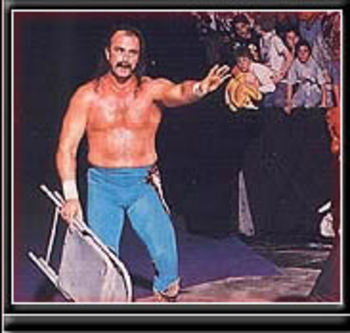 Jake_roberts_display_image